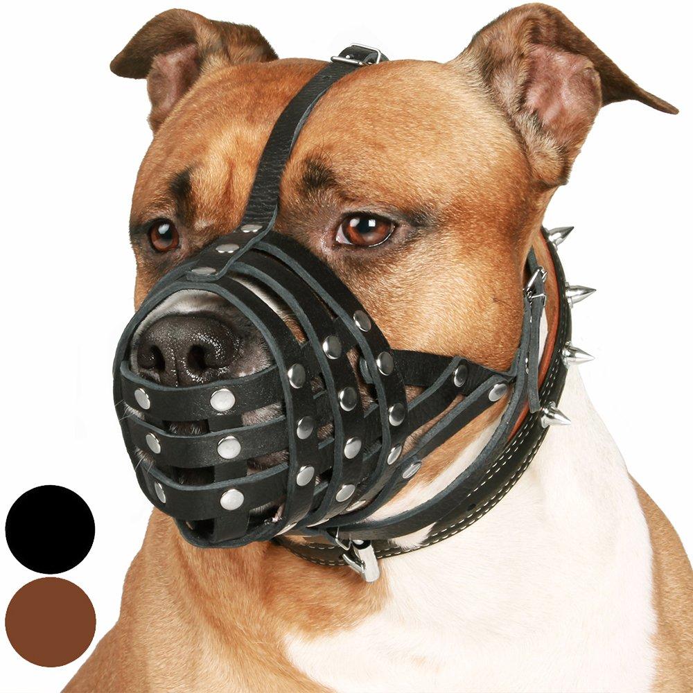 CollarDirect Pitbull Dog Muzzle Leather Amstaff Muzzles Staffordshire Terrier Secure Basket (Black) by CollarDirect
