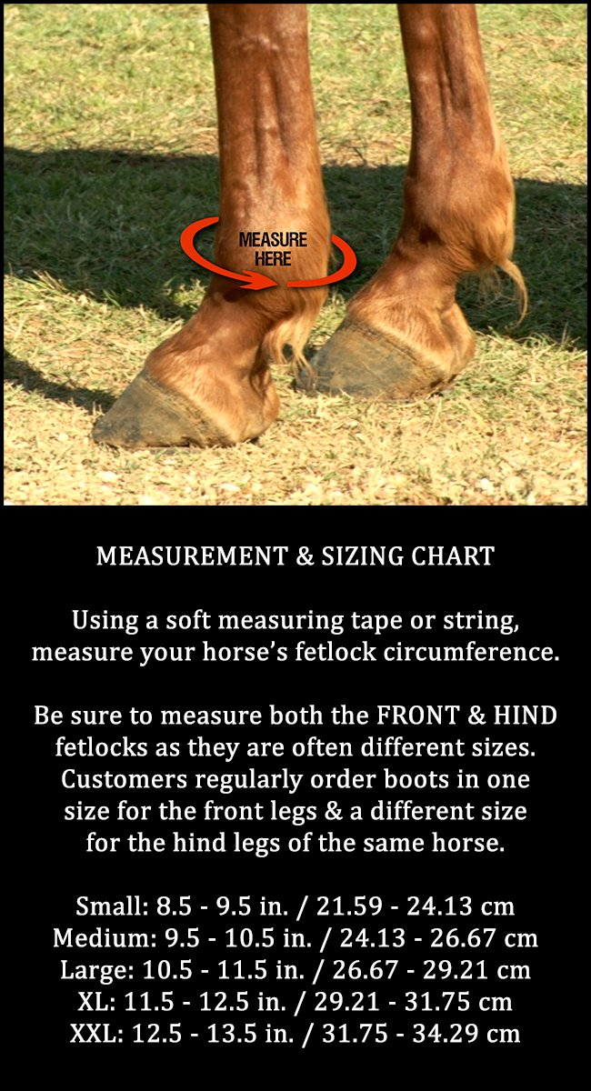 Front Legs Iconoclast Orthopedic Support Boots