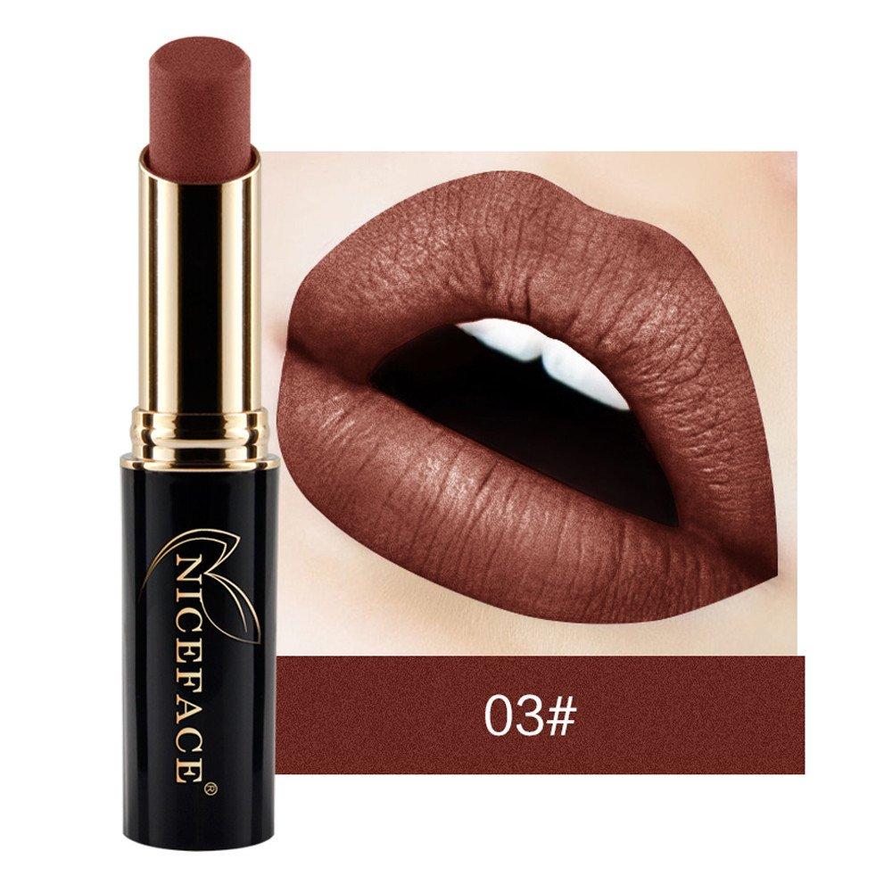Rouge à lèvres, Bluestercool Mat Lipstick Imperméable Lip Gloss Maquillage 24 Couleurs (16#)