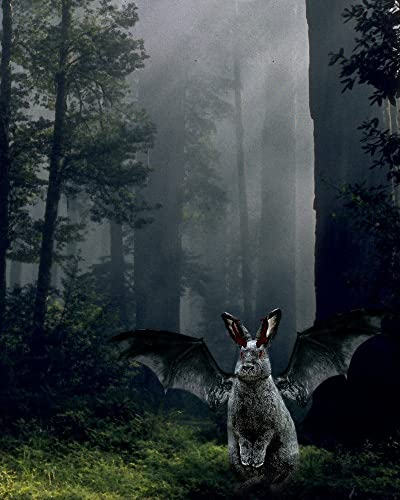 Amazon.com: Winged Gargoyle BUNNY in the Foggy Woods: Handmade