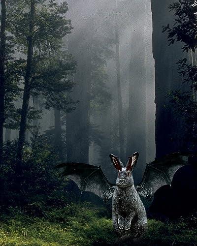 Amazon.com: Winged Gargoyle BUNNY in the Foggy Woods: Handmade