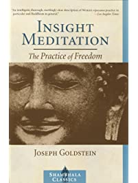 Amazon theravada buddhism books insight meditation the practice of freedom fandeluxe Images