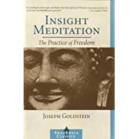 Insight Meditation: A Psychology of Freedom: The Practice of Freedom