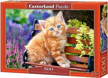 Castorland Ginger Kitten 500 pcs Puzzle - Rompecabezas (Puzzle ...