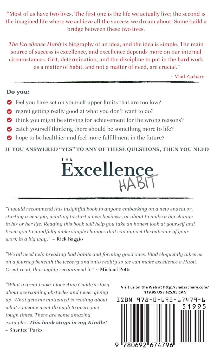 Buy The Excellence Habit: How Small Changes in Our Mindset