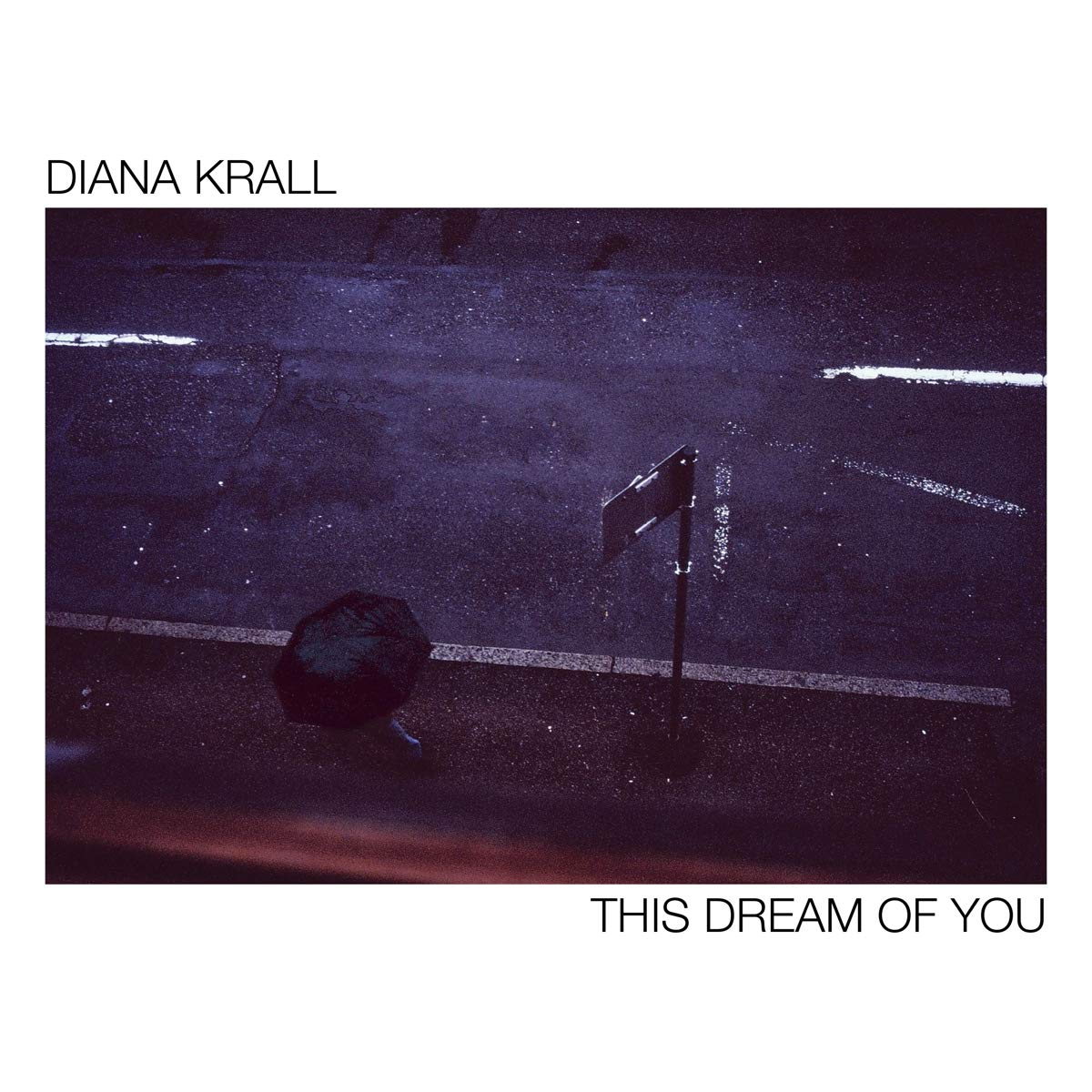 Book Cover: This Dream Of You