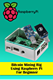 Bitcoin Mining Rig Using Raspberry Pi For Beginner: Mine Cryptocurrency Using Raspberry Pi (English Edition)