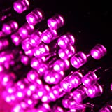 Benross pink christmas lights 200 ultra bright led string chaser 360 multi action led supabrights pink christmas lights indoor and outdoor use aloadofball Gallery