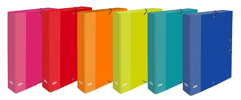 Elba Color Life - Pack de 6 cajas de proyectos de cartón forrado: Amazon.es: Oficina y papelería