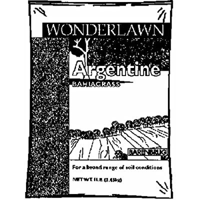 Barenbrug Argentine Bahiagrass Lawn Seed Bagged 2 Lb. : Garden & Outdoor
