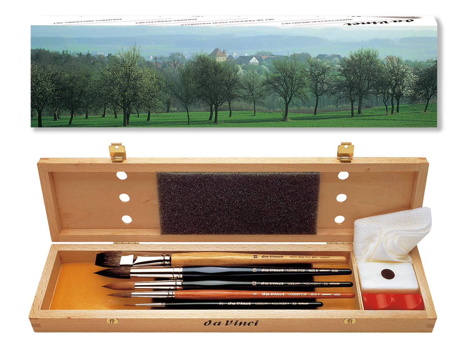 da Vinci Watercolor Series 5240 Deluxe Paint Brush Set, Natural Hair and Synthetic with Wooden Storage Box and Brush Soap, Multiple Sizes, 5 Brushes (Series 36, 991, 5530, 5550) by da Vinci Brushes