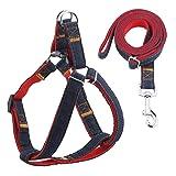 Dog Leash Harness Adjustable Durable Leash Set