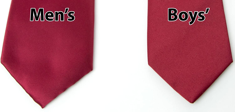 Spring Notion Boys Satin Zipper Necktie Optional Gift Box