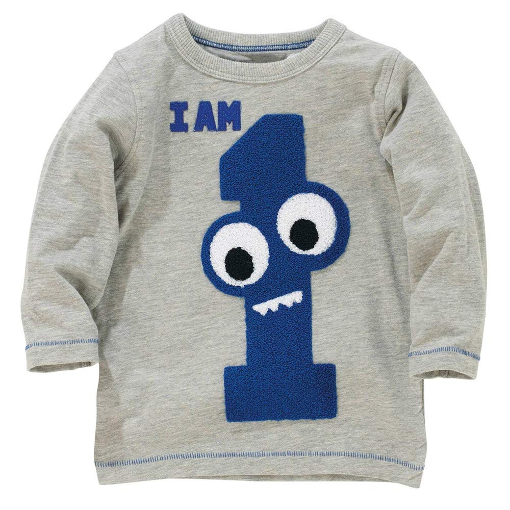 FeiliandaJJ Kids Toddler Children Kids Baby Boys Girls Long Sleeved Cartoon Number Print Tops T Shirts Tee Blouse for 1-7 Years