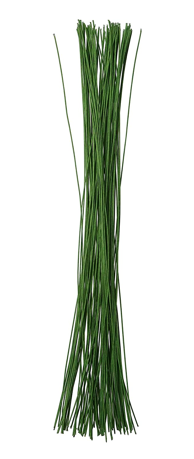Amazon.com: Green Crafting Floral Stem Wire 14 Inch 18 Gauge for ...