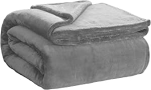 Ornavo Home Soft Plush & Fuzzy Lightweight Solid Throw Microfiber Flannel Fleece Bed Blanket Couch & Sofa - Reversible & All Seasons - Queen, Light Gray