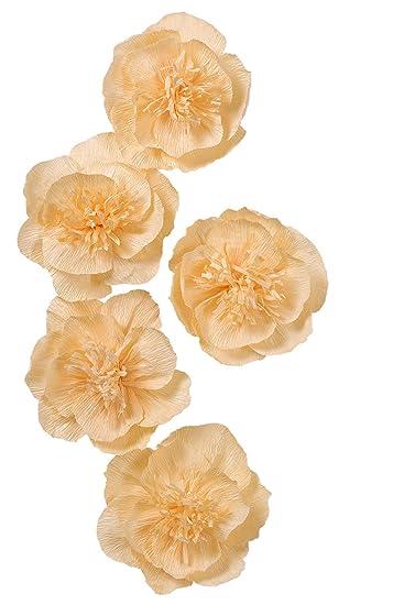 Amazon Letjolt Paper Flower Decorations Baby Orange Crepe Paper