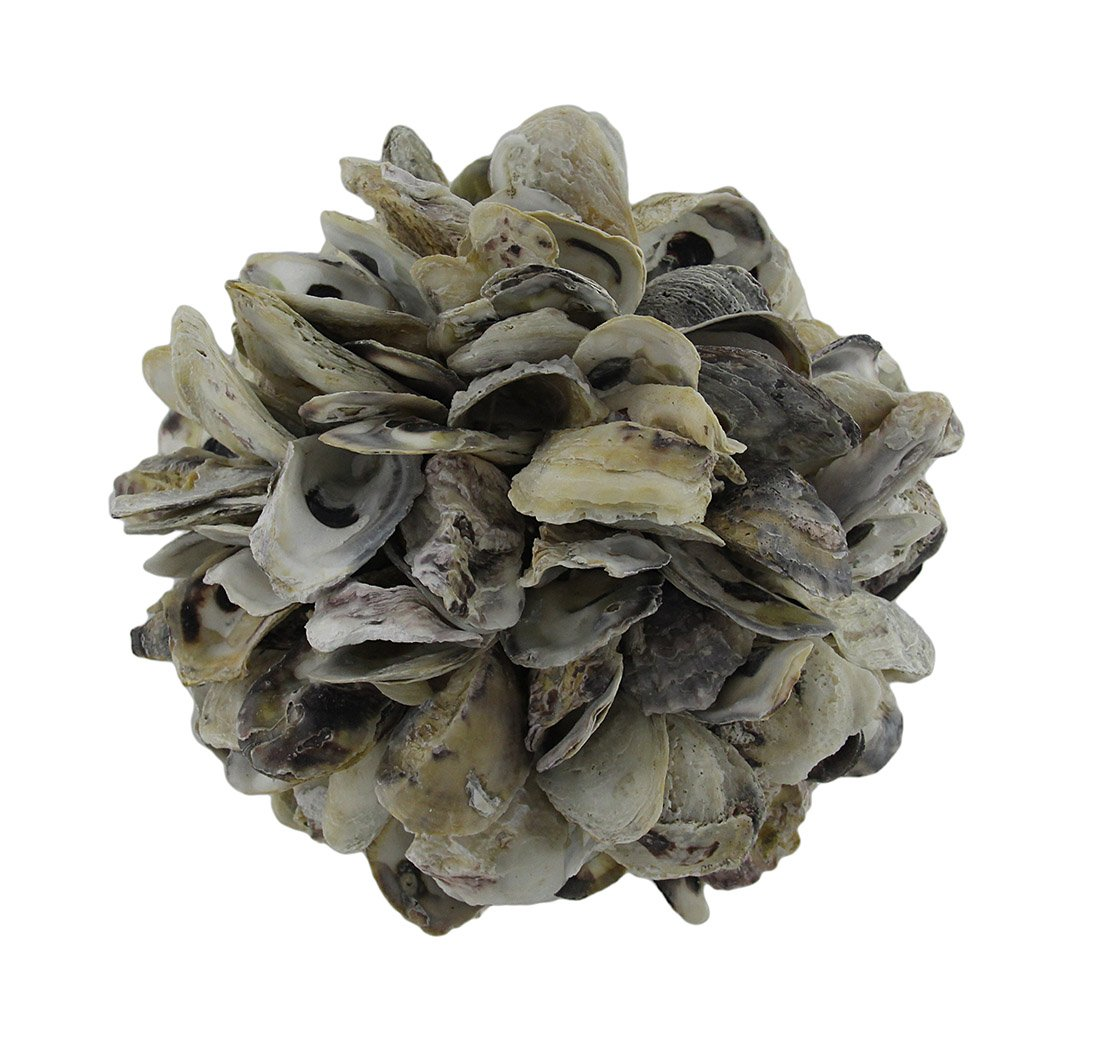 Zeckos Natural Oyster Shell Orb Decorative Indoor/Outdoor Accent Ball 9 Inch