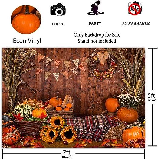 CapiSco Halloween Vinyl Backdrop Halloween Background Fall Thanksgiving Wooden Floor Barn Autumn Pumpkins Maple Leaves Sunflower Backdrop for Kids Adult Family Portrait Photo Backdrop 5X7FT SCO195A