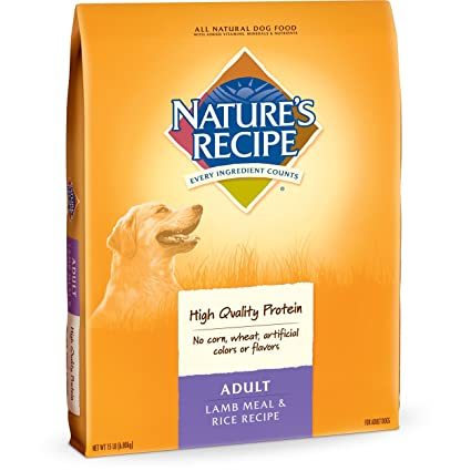 Amazon natures recipe adult dog food dry lamb meal rice natures recipe adult dog food dry lamb meal rice recipe forumfinder Image collections