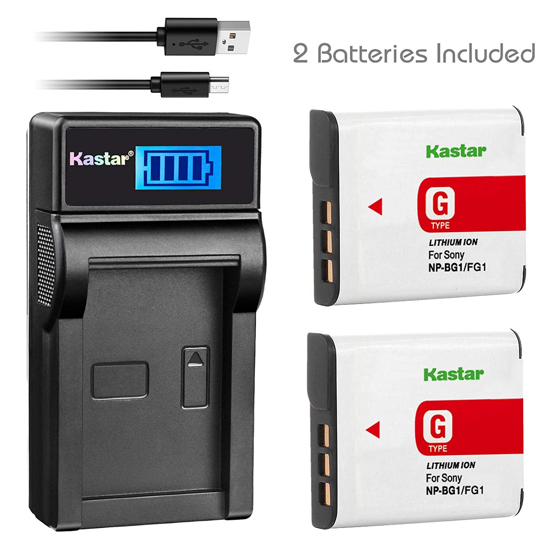 Kastar Cargador USB, recargable para np-bg1-g-2 NP-BG1 NPBG1 BG1 ...