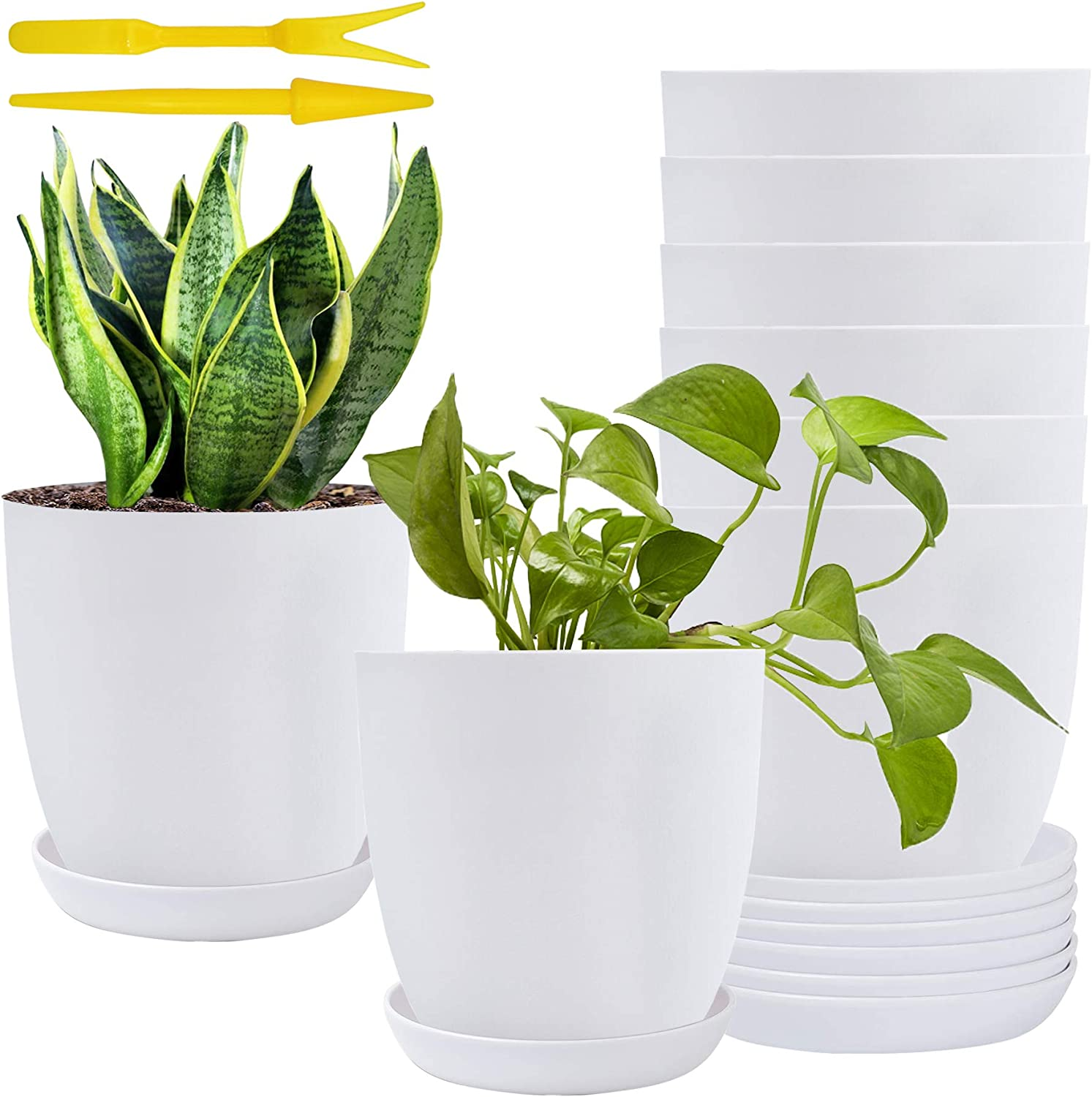 6Inch Plastic Planters White Modern Gardening Plant Pots Matte Indoor Planter Pot for Succulent Flowers Indoor Plants Cactus Herbs Yards Garden Office Decoration with Saucer Drainage Holes Set of 8