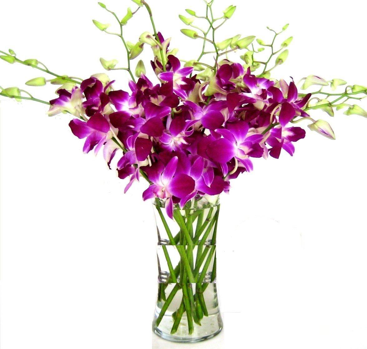 Fresh Cut Flowers -Dendrobium Purple Orchids with Vase by eflowerwholesale