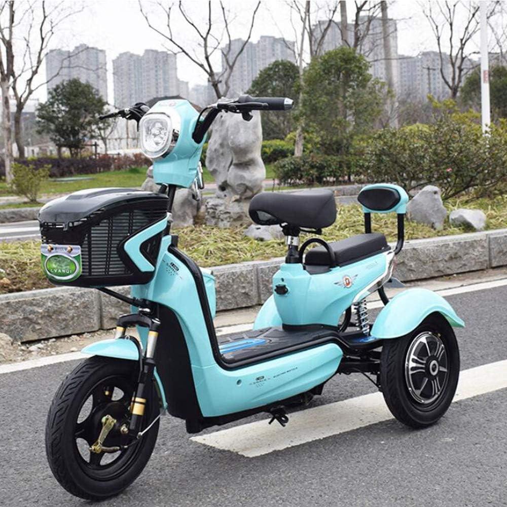 Smx Verde de Energía Eléctrica de 3 Ruedas Scooter eléctrico Triciclo, Individual Doble Ocio al Aire Libre de 3 Ruedas de Bicicletas, Apto para Personas Mayores Adultos, batería de Litio de 20A