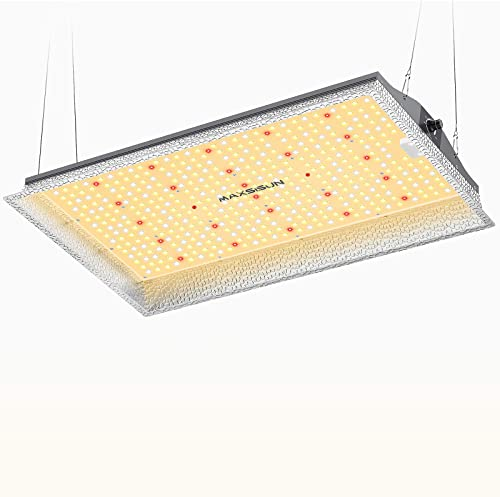 MAXSISUN Dimmable MF2000 LED Grow Light Using Samsung LM301B LEDs IR Included Mean Well Driver 15mm-Thick Heat Sink, Sun-Like Full Spectrum for Indoor Plants Veg Bloom, for 3 x 3 ft Grow Tent