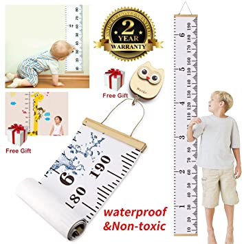 Amazon Growth Chart Movable Writable Recordable Durable Height