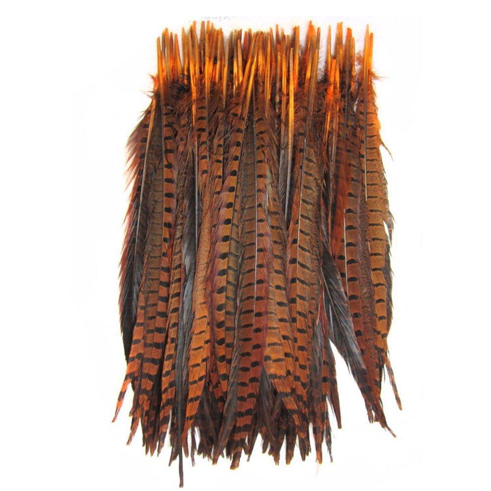 KOLIGHT Set of 500pcs Natural Dyed Pheasant Tails Feathers 12-14 Inch DIY Decoration (Orange) by KOLIGHT