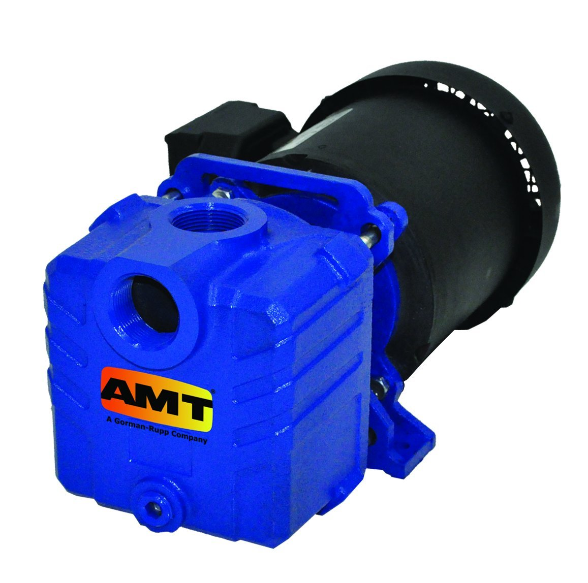 """AMT Pump 2851-95 Self-Priming Centrifugal Pump, Cast Iron, 1/3 HP, 1 Phase, 115/230 V, Curve A, 1"""" NPT Female Suction & Discharge Ports"""