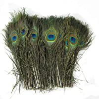 20pcs beautiful natural peacock feather eyes 10-12 inches / 25-30 cm Dance Party
