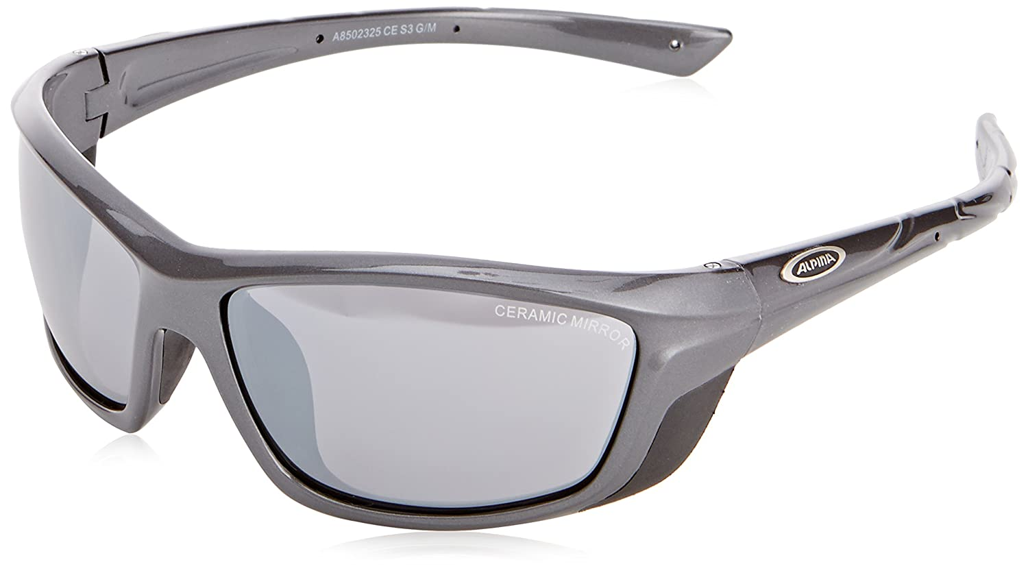 Sportbrille Alpina Flexxy anthracite/black
