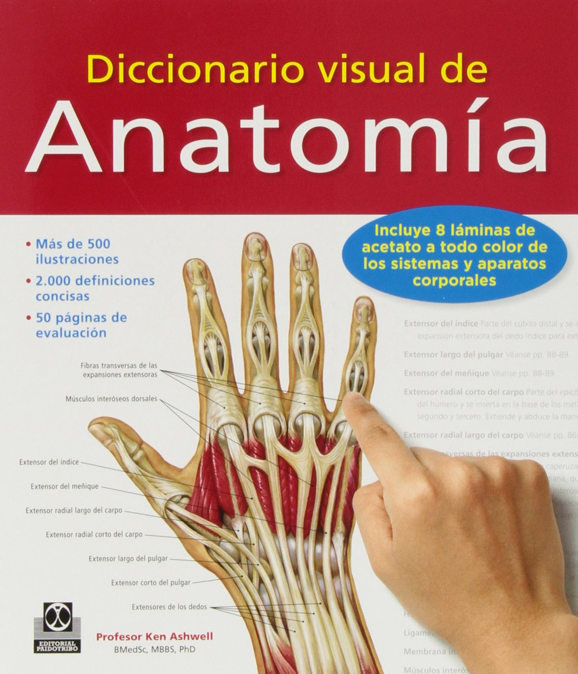 Diccionario visual de Anatomia (Spanish Edition): Ken Aswell ...