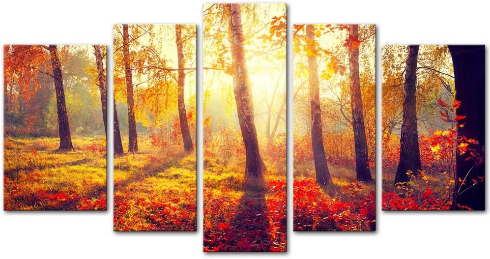 Amazon Com Wall Art Decor Poster Painting On Canvas Print Pictures 5 Pieces Beautiful Fall Scene Autumnal Park Autumn Trees And Leaves In Sun Rays Landscape Forest Posters Prints