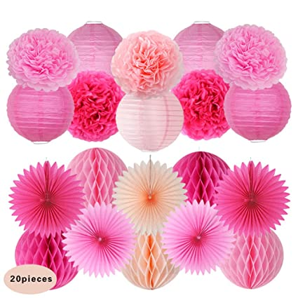 20pcs Tissue Paper Pom Poms Paper Lanterns for Party Baby Shower Wedding Decor