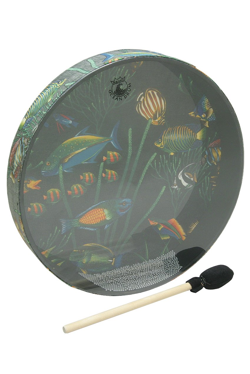 Remo OCEAN DRUM, 16-by-2.5-Inch, FISH (Package Of 3)