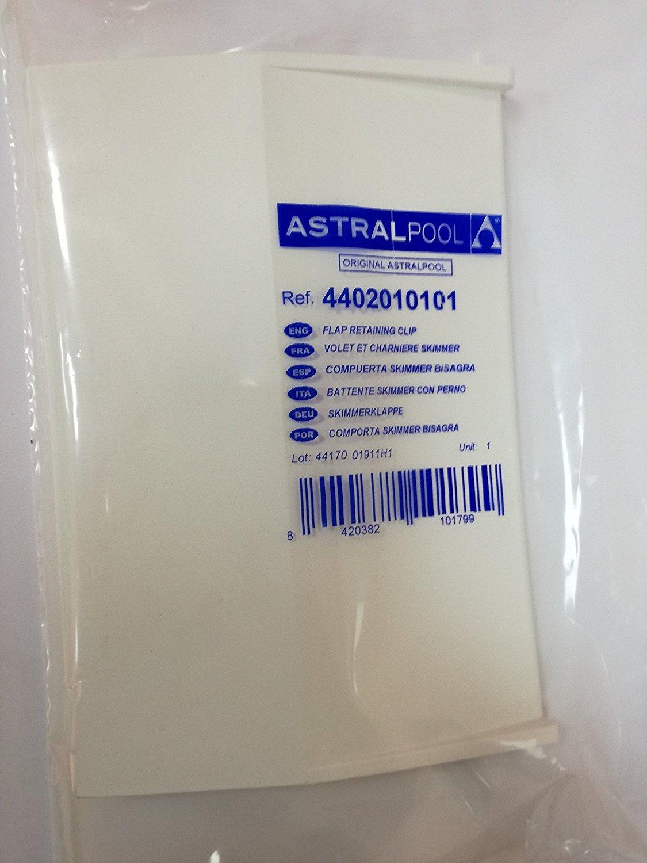 Rocalba - Compuerta para skimer con bisagra ASTRALPOOL