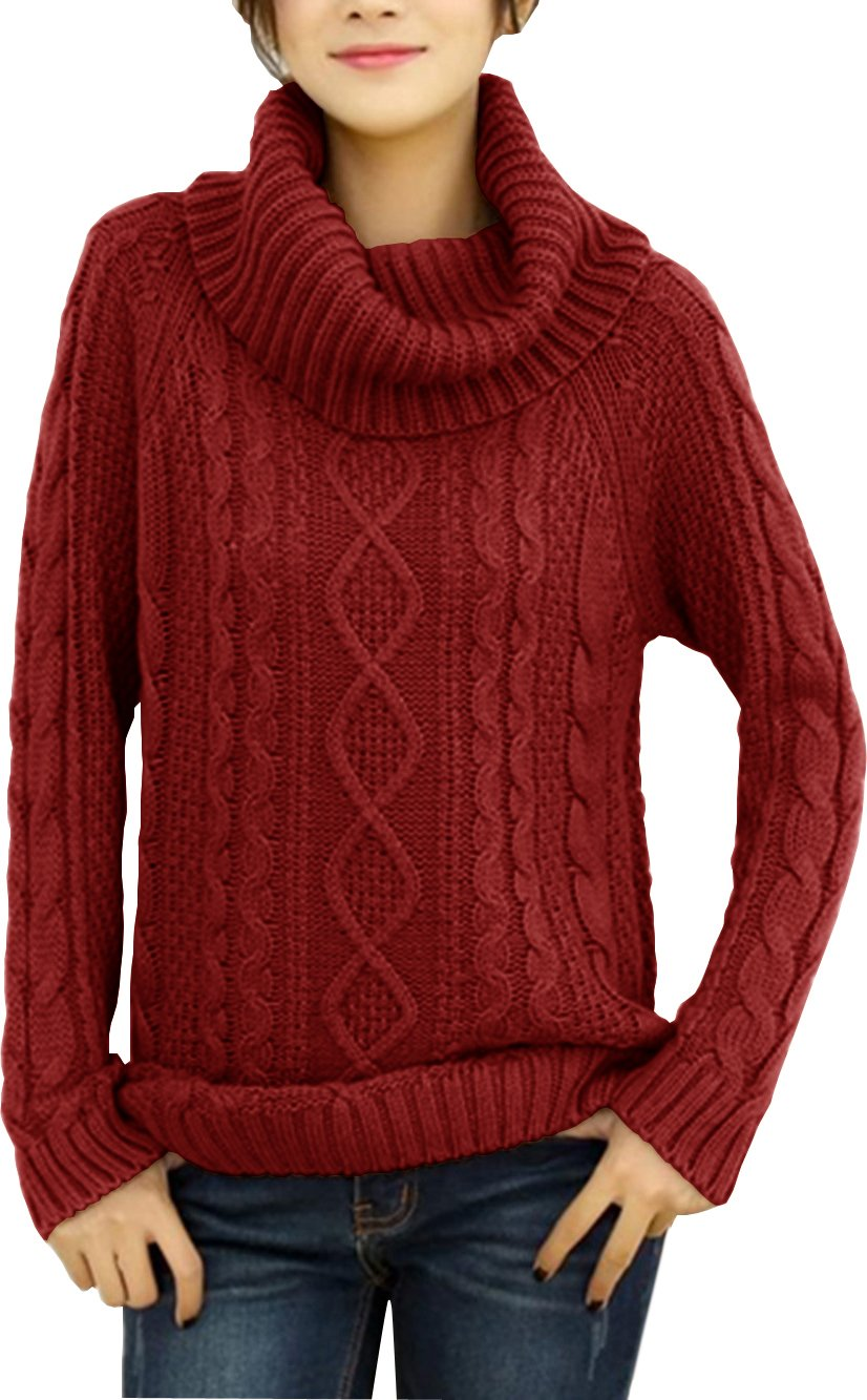 v28 Women's Korean Design Turtle Cowl Neck Ribbed Cable Knit Long Sweater Jumper (M, Wine)