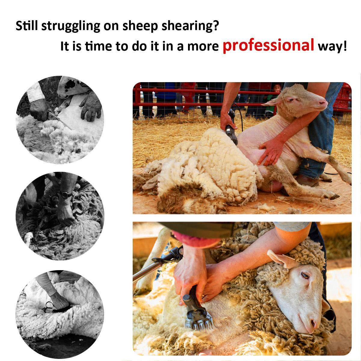 Clipper elettrici da cesoie da 650W, cesoie cesoie cesoie elettriche professionali per capre per animali da pelliccia per miglioreiame da allevamento, 6 velocità 13 denti 0f64c7