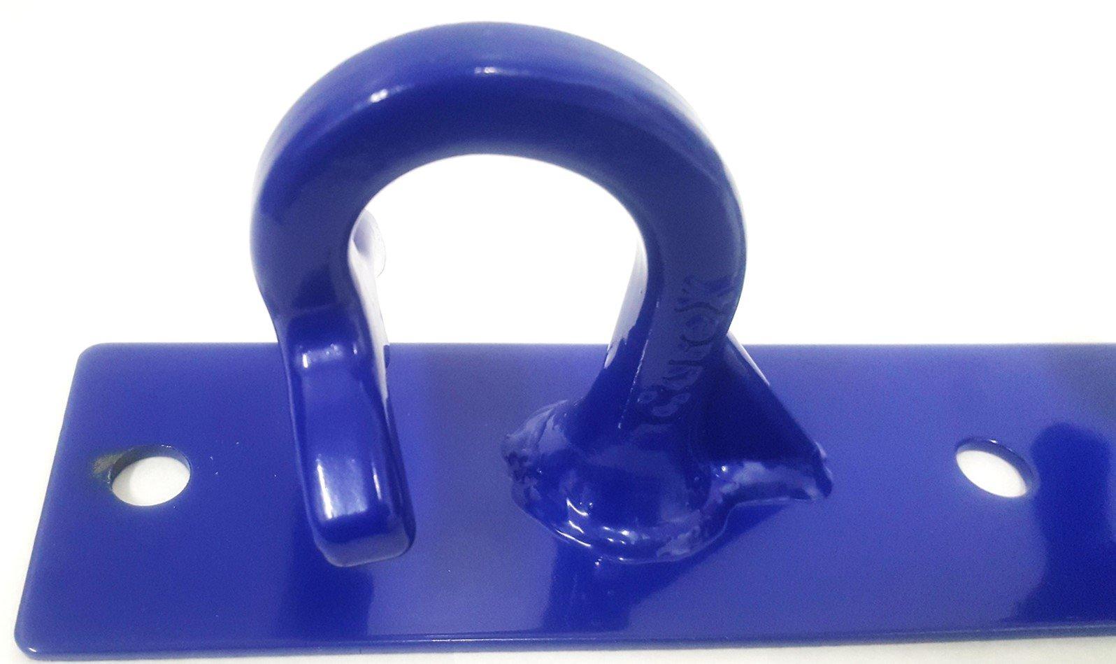 CoreMount Hook, Suspension Bodyweight and Resistance Training Hook Mounts (Blue, Vertical)