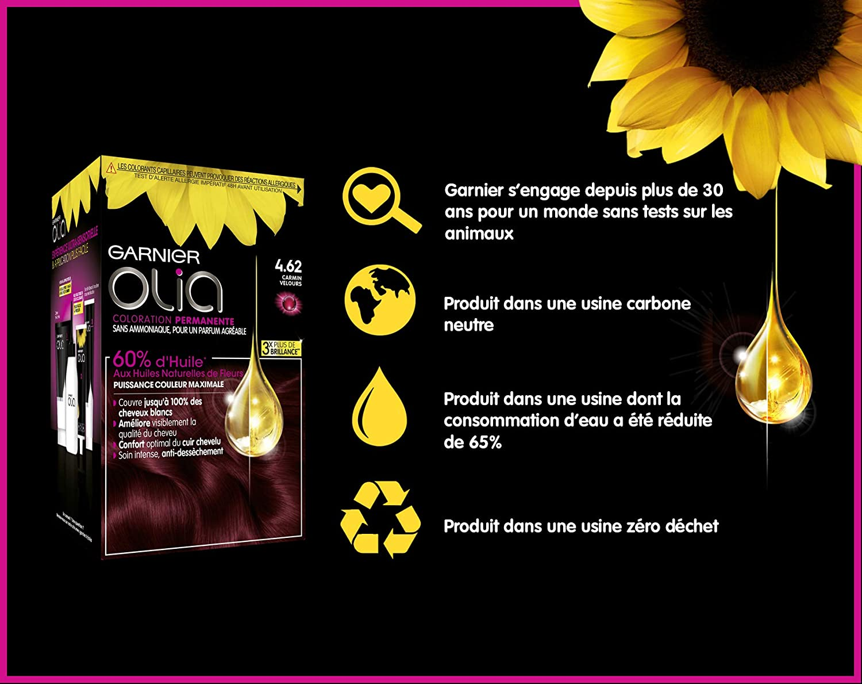 Garnier - Olia - Coloration Permanente à lHuile Sans Ammoniaque Carmin - 4.62 Carmin Velours