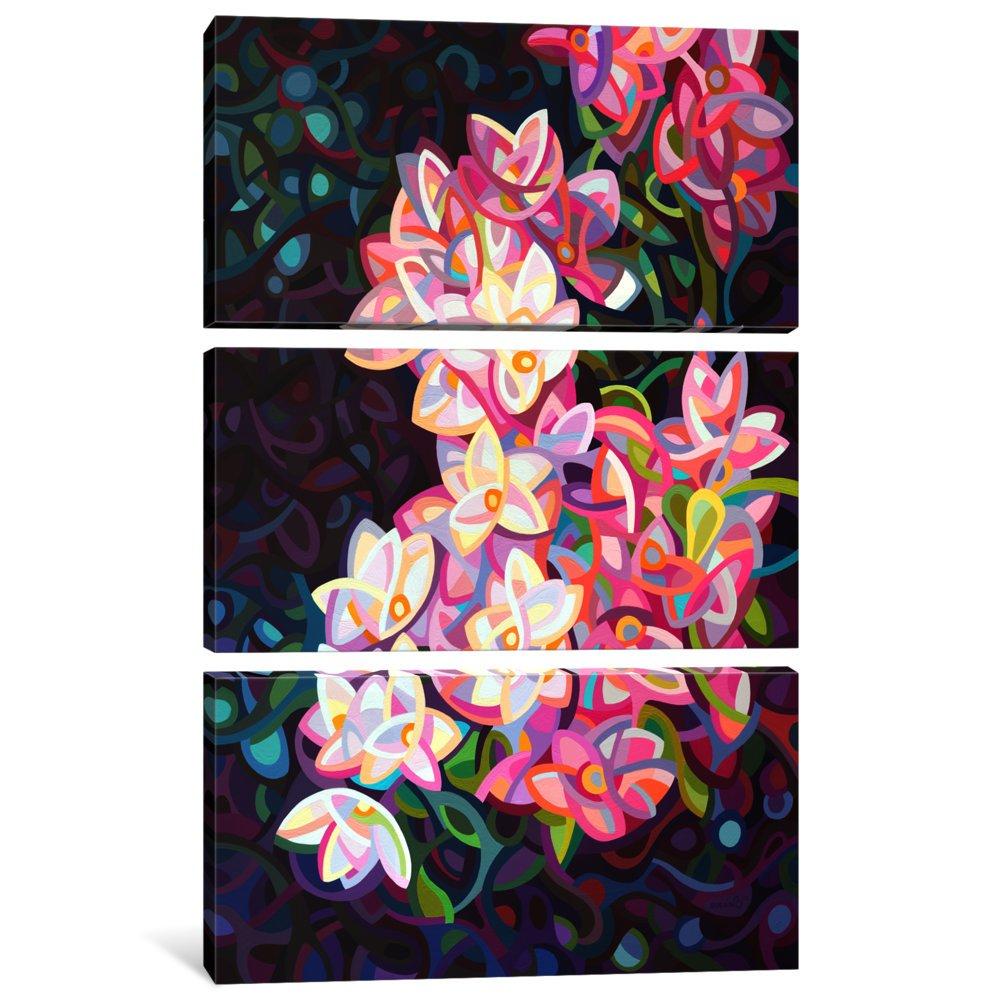 iCanvasART 3 Piece Cascade Canvas Print by Mandy Budan 60 x 40//0.75 Deep