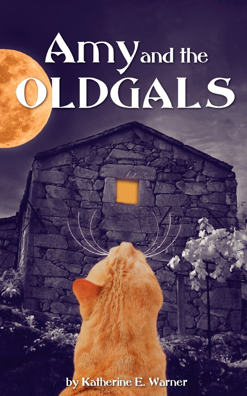 Amy and the OLDGALS ebook