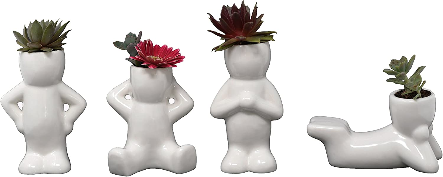 Ceramic Planters for House Plants-Plant Pots Set for Indoor & Outdoor Use (Alex, Robin, Mika & Parker) by Arad