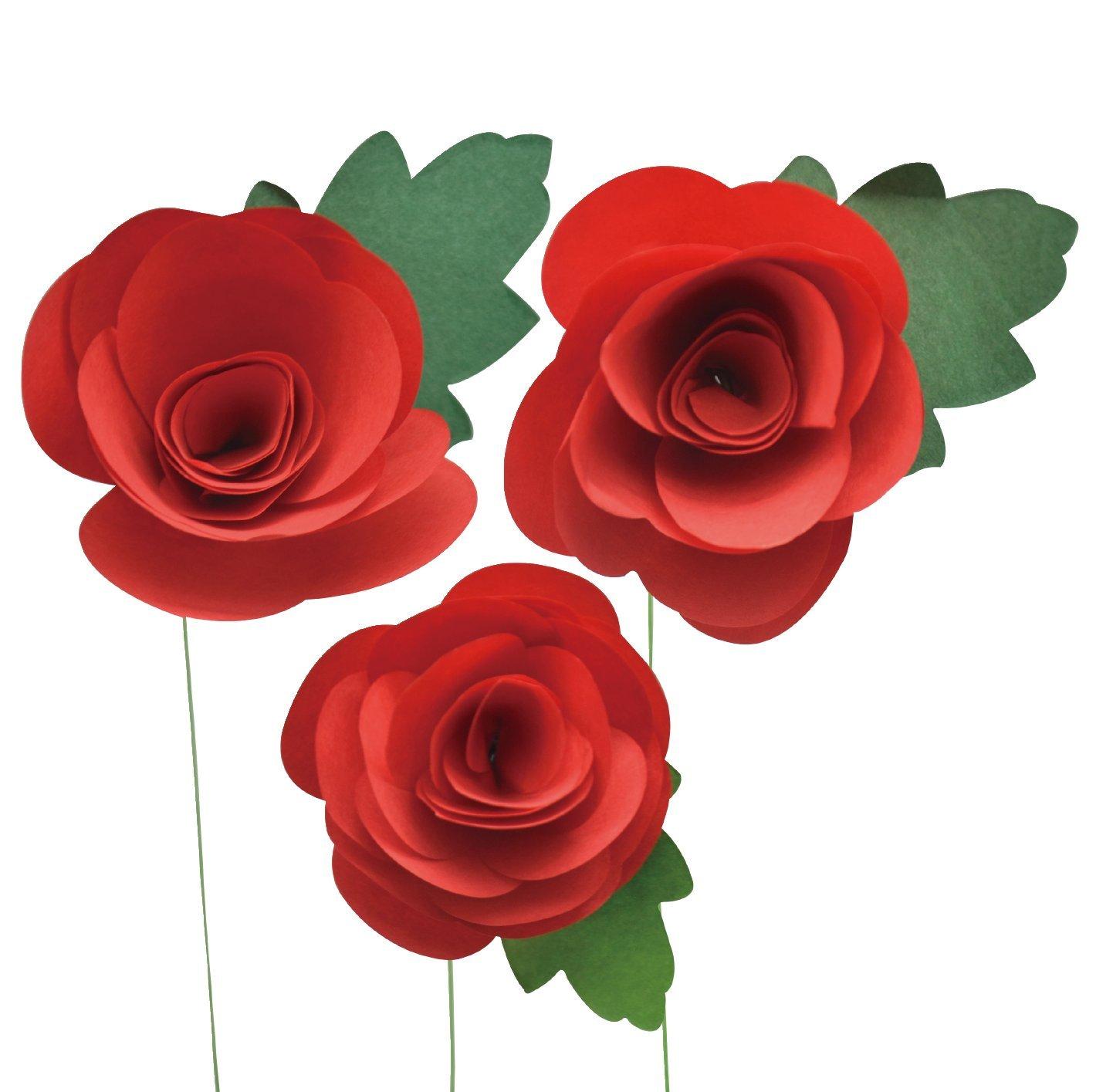 Amazon Little B 20 Piece 100510 Paper Flower Petal Strips Red Rose