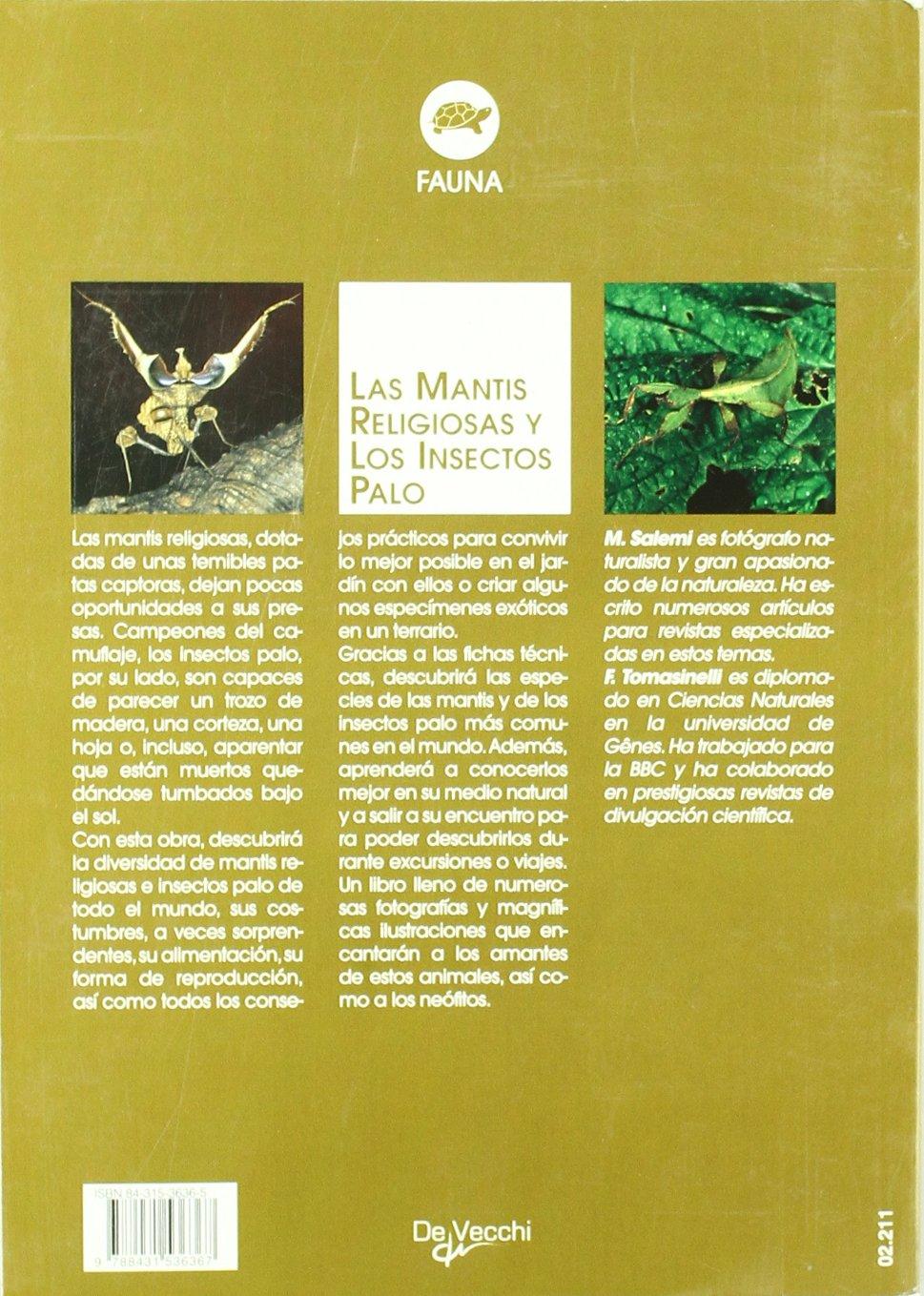 La Mantis Religiosa Y Los Insectos Palo Animales Amazonde Marco