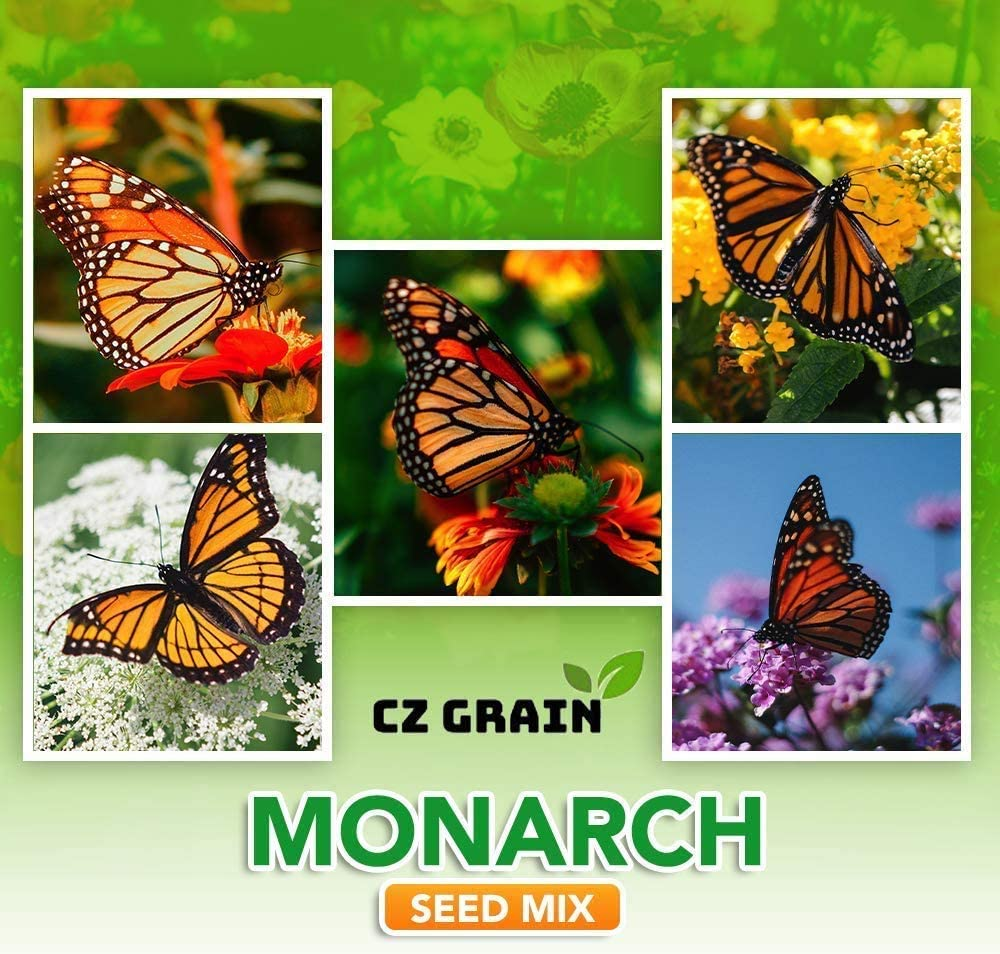 Monarch Butterfly Garden Seed Kit - Annual and Perrenial Wildflowers and Milweed Seeds