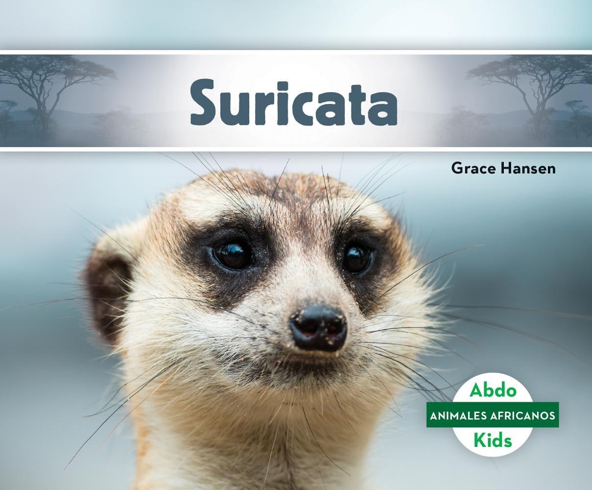 Suricata (Meerkat) (Animales Africanos/ African Animals)
